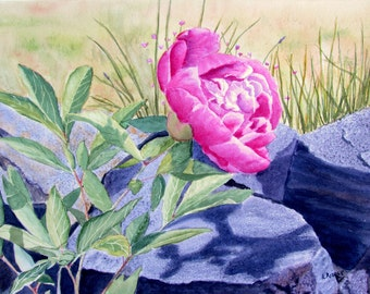 Pink peony painting original watercolor flower painting 11x15