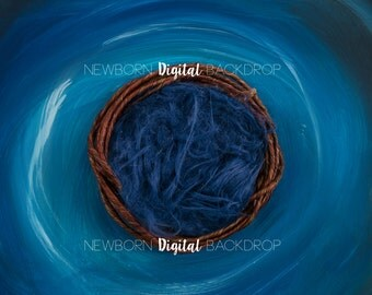 NEW! Newborn nest Digital backdrop/background - baby boy