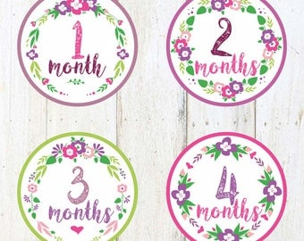 Baby Monthly Stickers- 1-12,Baby Girl,Shower Gift,Photo Prop,Baby month stickers,Girl month stickers