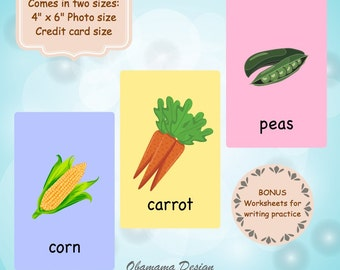 Vegetable Flashcards EDUCATIONAL PRINTABLE