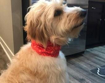 Custom Made Dog Collar Cover/Dog Scarf