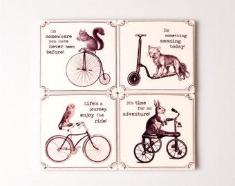 Inspirational Animal Coasters (Set of 4) Sass&Belle