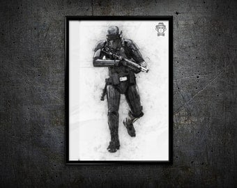 Rouge one stormtrooper home decor wall art