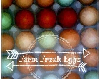 Farm Fresh Eggs Digital Image Download