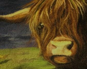 Highland Cow - FRAMED felt painting