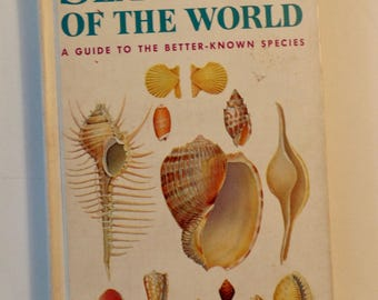 Sea Shells of the World Golden Nature Guide 1962 Golden Press Vintage Collector's Guide