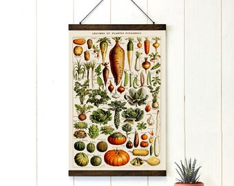 Pull Down Chart, Vegetables Educational Chart Diagram, Adolphe Millot Legume Et Plante Potageres, Vintage Style, Kitchen art, 20x29