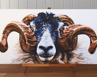 Swaledale Ram - limited edition canvas print. Sheep painting - sheep art - sheep print - sheep gifts.