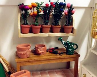 Dolls House Miniature Flower x 5 & Shelves