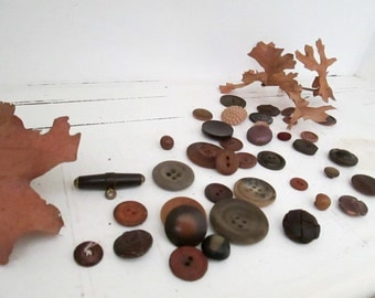 Beige to Brown Buttons for Crafts, Art, Jewelry