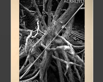Knots, branches and twigs- inspirational contemporary abstract black and white- mounted 18X12 print- BY DCA