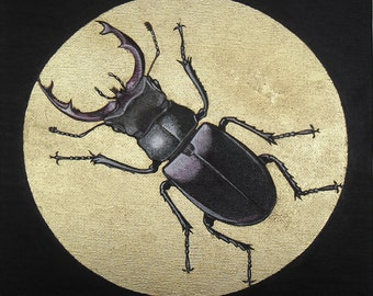 Gilded Insects – Stag Beetle