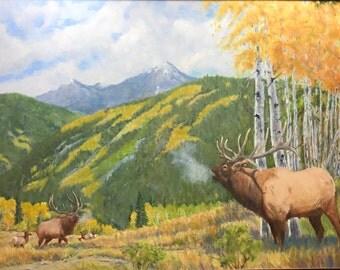 Fall in the Rockies - Colorado, USA