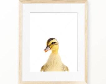 Duckling Print, Duckling Wall Art, Nursery Animal, Woodlands Nursery Decor, Duck Printable Poster, Duckling Digital Print, Digital Download
