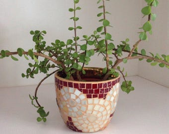 Planter in Mosaic for plants.