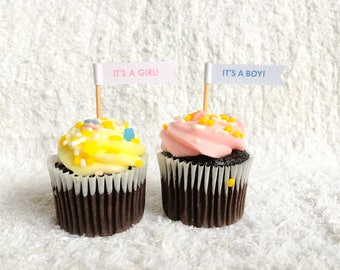 Gender Reveal Cupcake Flags (Toppers)