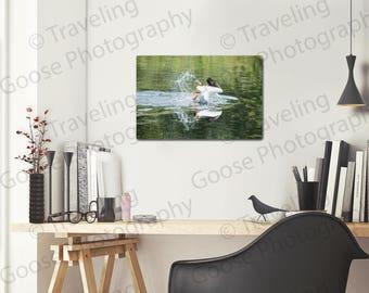 2-on-1 Pelicans, Fine Art Photography, House Decor, Waterfowl Photography, Wildlife Art, Bird Prints, Sea Birds, Home Decor, Pelican Art