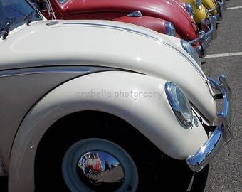 Volkswagon Beetle Parade  8x10 glossy photo by Hunter Cooksey