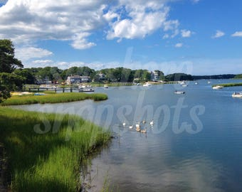 Bay Swans Cottage Decor Instant Download Beach Photography / Ocean Photography / Landscape Photography