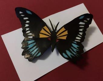 Blue Swallowtail Butterfly Cut Paper Pin