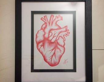 Original framed pen drawing - Anatomical Heart