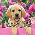 debsattic2