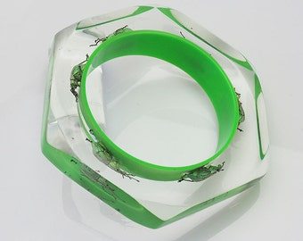 Six sided green lucite bracelet with real exotic beetles