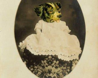 Anthropomorphic Dog Art, Altered Photo, Victorian Portrait, Photo Collage Art, Antique Photograph, Sepia Photo, Cabinet Card