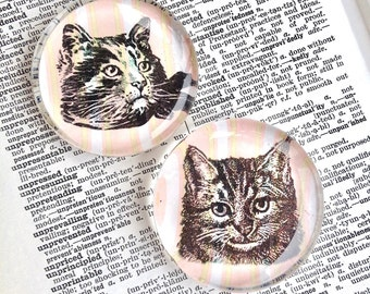 Cat Magnet - Jumbo Glass Magnet - Kitten Magnet - Animal Magnet - Fridge Magnet - Favor - Party Favor - Cute Cat Faces - Cat Gift