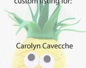 Custom Listing for Carolyn Cavecche