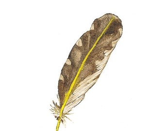 SALE Northern Flicker Feather, Original Watercolour Painting, Brown, yellow