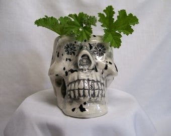 Black and White Ceramic Skull  Planter