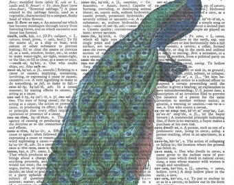 Peacock Illustration-Vintage Dictionary Art Print---Fits 8x10 Mat or Frame