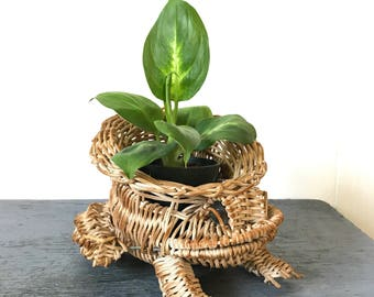 vintage frog planter - natural wicker mini plant holder - nature garden decor