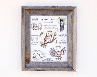 Children's Art  -- Woodland Guide Barred Owl -- Archival Art Print