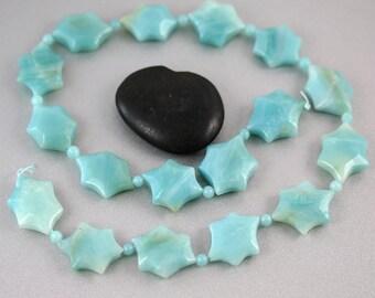 Star Amazonite Beads - Full Strand - Amazonite Beads - Hexagon Coins