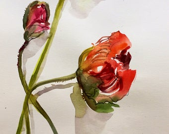 Watercolor painting - Big Poppy Flower Study- original floral watercolor