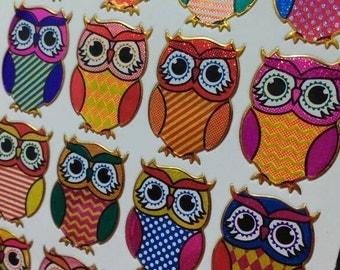 Sparkle Prismatic Rainbow Owl Stickers