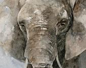 Elephant Fine Art PRINT from Watercolor Elephant Painting nursery room decor nursery art baby 8x10 grey blue gray beige tan brown jungle zoo