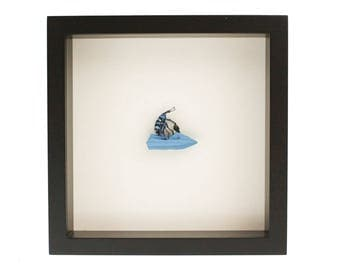 Water Bug Insect Art Diorama featuring a Weevil on Jetski