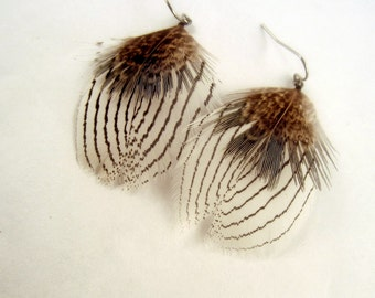 Natural Feather Earrings Silver pheasant