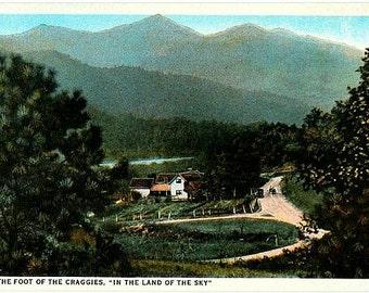 Antique North Carolina Postcard - At the Foot of the Craggies (Unused)