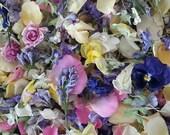 Dry Flower Confetti, Wedding Favor, Wedding Confetti, Tossing Flowers, Wildflowers, Dry Flower Petals, Roses, 1 Clear Favor Bag of Confetti