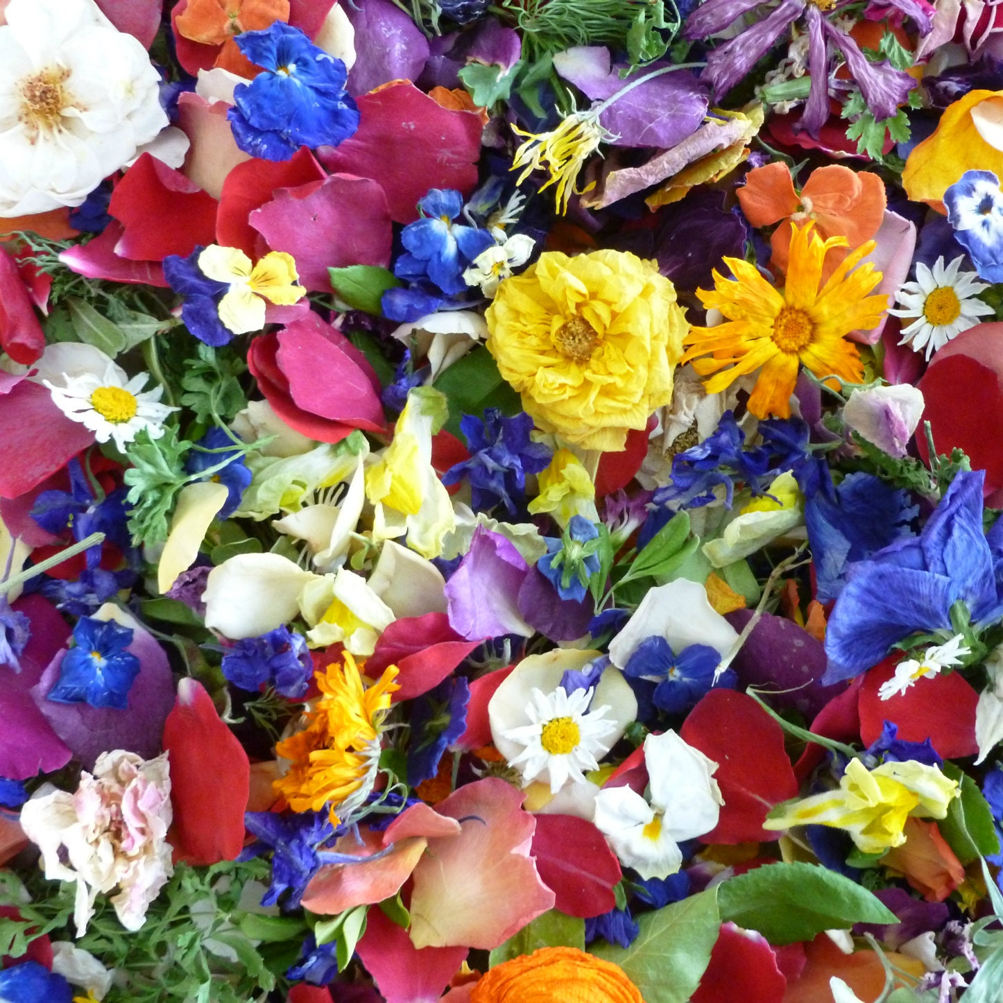 Wedding confetti dried flowers craft supplies wedding for Dried flowers craft supplies