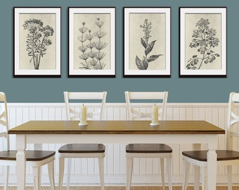 Wild Field Flower  (Series B9) Set of 4 - Art Prints (Featured in Charcoal on Stone Wash ) Botanical Flower Art Prints