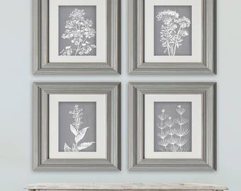 Wild Field Flower  (Series B2) Set of 4 - Art Prints (Featured in Flint) Neutral Botanical Flower Art Prints