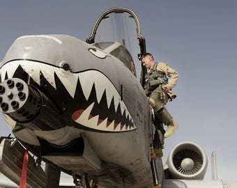 a-10 Thunderbolt fighter Afghanistan nose art repro image print 8 x10