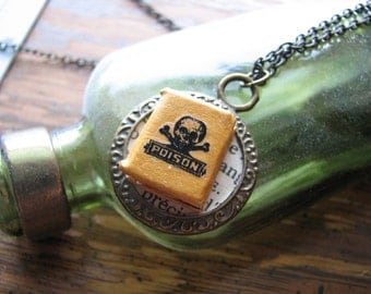 Skull and crossbones necklace | alchemy book | miniature | poison