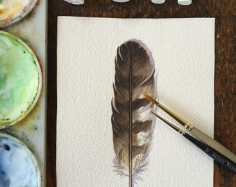 Hawk feather - Original Watercolour study of a feather