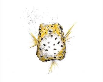 Yellow Spotted Boxfish Giclee Print
